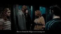 【大逃猜S13】【集齐七个召唤神龙】Harry Potter-When We Were Young-法兰克斯