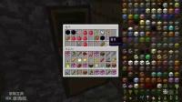 秀逗兄弟游戏解说 第2集寻找建设村庄 我的世界 Minecraft 籽岷恐龙世界模组 侏罗纪世界公园模组 霸王龙迅猛龙化石DNA 冒险地牢幸运方块MOD