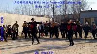 河北灵动广场舞-舞动中国(2人版)