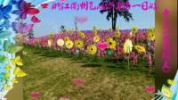 浙江衢州飞鸿滑草场一日游 2016年12月12日