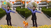 沈北新区喜洋洋广场舞-我爱西湖花和水-个人版-表演喜洋洋