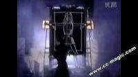 David Copperfield [Vertical cut] (sawing half)