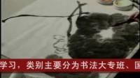 中国书画函授大学国画讲座:画荷花技法2
