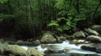 聆听大自然的声音---《水疗》音乐:《Resonance》