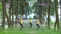 兰燕稻都广场舞:桃花谣(舞韵瑜伽)(正反面演示)