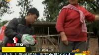 山东志愿者抵达灾区医药食品送山中 民生直通车 0424
