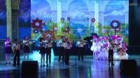 合肥蒙悦琴行2017新年音乐会完整版下半场720P