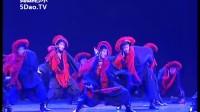 第十届桃李杯舞蹈 群舞 黑袖之舞 民族民间舞