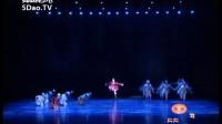 第十届桃李杯群舞专辑完整版 最鲜艳的花朵 民族民间舞