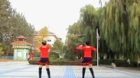 排舞 江南风格(Gang nan Style)正面加背面演示加口令示范 阳光玫瑰广场舞