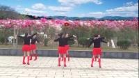 艳桃广场舞《玫瑰好妹妹》团队版