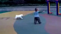 一岁七个月与小狗玩