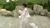 杨式太极拳85式教学