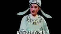桃李梅·同舟(章瑞虹 张咏梅)