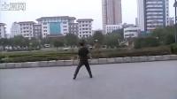 刘峰老师舞蹈《我愿》反面