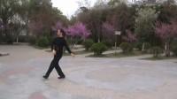 学跳舞蹈梅花引