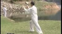 太极拳名家陈银贵=杨式太极115式=教学视频