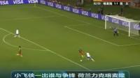 2010世界杯荷兰悲壮之路