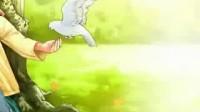 叶儿与树的情义 朗诵:墨茗 海天
