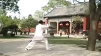 东岳太极拳竞赛套路