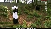 阿卡出国去:中国