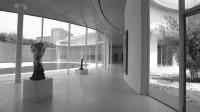 树美术馆(黑白版)
