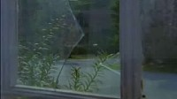 鸡皮疙瘩之邻屋幽灵(1)
