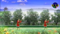 安徽黄山广场舞《梦中有片绿草地》