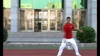 张金树:太极柔力球第二套教学