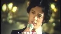 刘文正电影节选——一番情意