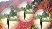 广场舞-映山红