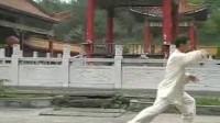 大四锺(24式)  王钧荣
