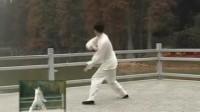 陈氏太极拳老架一路74式-背面全套演练-王二平