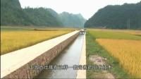 壮族稻作文化