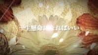 世界に一つだけの花 歌ってみた 【neroゆう十withみんな】