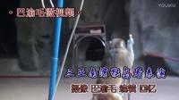 【原创】巴渝毛微视频/《三亚南湾猴岛看表演》