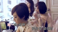 张韶涵 - 有形的翅膀  KTV版伴奏视频