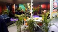 气模网 2017亚洲乐园及景点博览会巡礼系列之鸿基座椅