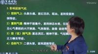 2017乡村全科助理执业医师 中医辩证 第7讲 诊法(五)