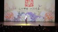 王宏伟《西部放歌》1