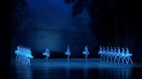 Dances of the Swans