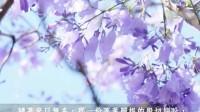【梦里不知身是客】书香音乐系列10-3