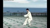 陈思坦:48式太极拳教学(第六段)