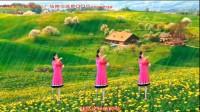 邯郸海南行广场舞泡泡雨原创正背面分解动作