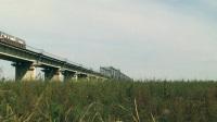 【火车视频】芳草兮兮里探桥Ⅱ