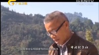 广西故事四十六 布洛陀文化.flv