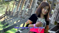 苗族歌曲 DaLee Chang Vol.1 - 11 zoo siab koj xai kuv