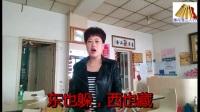 俞鸿艳莲花落《相亲苦相亲累》.mp4