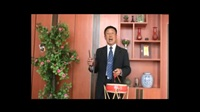 刘纯松岳西鼔书《薛仁贵征东第三十集》