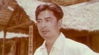 寄托(1976年)